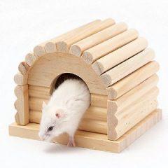 CARNO 原木倉鼠舒適屋(底部可拆)