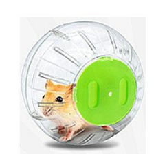 Jolly 楓葉鼠健身球(透明綠蓋)-13公分