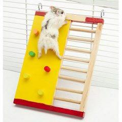 CARNO 倉鼠運動攀爬梯